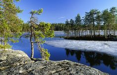 Spring in Helvetinjärvi National Park, Finland. Landscape Quilts, Water Reflections, Summer Dream, Best Cities, Archipelago, Outdoor Life, Denmark, Norway, Tourism