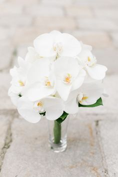 White Phalaenopsis Orchid Bouquet | Photography: Iconoclash