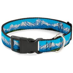 Buckle-Down 11-17' Landscape Snowy Mountains Plastic Clip Collar, Medium * Details can be found by clicking on the image. (This is an affiliate link and I receive a commission for the sales)
