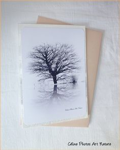 Carte Black and White de Céline Photos Art Nature