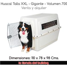 Petmate Giant Vari Kennel for dogs features tough durable construction with easy-open squeeze latch that's great for TRAVEL or In the Home! Airline Pet Carrier, Dog Carrier, Dog Crates For Sale, Dog Kennels For Sale, Cool Dog Houses, Giant Dogs, Best Dog Training, Puppy Care, Pet Mat