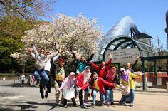 Paket Tour Cheria Wisata Setelah Liburan Lebaran idul fitri Domestik dan Internasional Harga Bersaing di tahun 2016