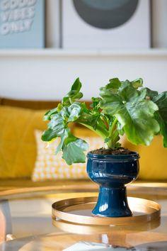 Bloempot petrol - Enter My Attic Botany, Attic, House Plants, Interior Design, Decoration, Shop, Vintage, Lofts, Nest Design