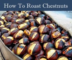 How To Roast Chestnuts...http://homestead-and-survival.com/how-to-roast-chestnuts/