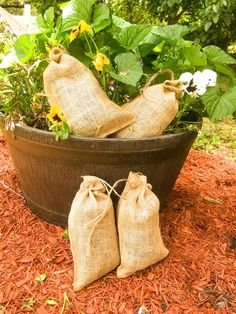 Make your garden and flowers grow like never before with alpaca tea.  Visit our website to learn more or to purchase a bag or two. Carolina Pride, Suri Alpaca, Great Pyrenees, Organic, Tea, Website, Garden, Flowers, How To Make