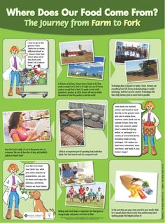 Farm to Fork Activities Poster