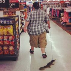 Because you were in Wal-Mart and you saw some guy walking an alligator: