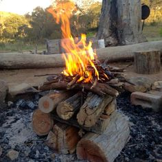 Hmmm.....Making an upside down fire. It's a cleaner burn with far less smoke and better combustion, gives off more heat, needs less tending and uses the embodied energy in wood more efficiently than the tipi-esque fire method.
