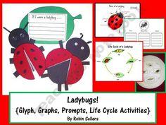Ladybug Glyph for an integrated approach at Sweet-Tea-Classroom Shop - | Teachers Notebook