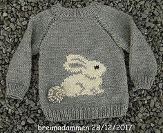Sweet bunny sweater pattern by de breimadammen - Knitting Crochet Baby Sweater Patterns, Baby Cardigan Knitting Pattern, Knit Baby Sweaters, Baby Patterns, Crochet Cardigan, Crochet Patterns, Baby Boy Sweater, Free Childrens Knitting Patterns, Crochet Baby