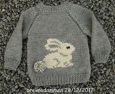 Sweet bunny sweater pattern by de breimadammen - Knitting Crochet Baby Sweater Patterns, Baby Cardigan Knitting Pattern, Knit Baby Sweaters, Baby Patterns, Crochet Cardigan, Crochet Patterns, Baby Boy Sweater, Free Childrens Knitting Patterns, Barn