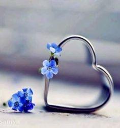 ❥●❥ ♥ ❤ Forget me not heart ❤. I Love Heart, Happy Heart, Your Heart, Heart In Nature, Heart Art, Heart Wallpaper, Love Wallpaper, Heart Images, Heart Pictures