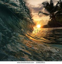 beautiful tropical palm beach with colorful breaking wave under sunset