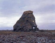 Olaf Breuning, Mammoth, 2008