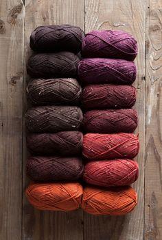 Autumn Stroll Sampler.....http://www.pinterest.com/lemidi/a-u-t-u-m-n-t-r-e-a-s-u-r-e-s/