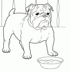 A Bulldog Puppy Catching A Ball Coloring Page Animal Coloring