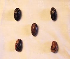 A quincunx of beans.