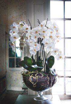 This is Marvelous: Orchid Centerpiece Flowers For You, Fake Flowers, Silk Flowers, White Flowers, Artificial Floral Arrangements, Artificial Orchids, Silk Flower Arrangements, Style At Home, Indoor Orchids