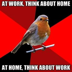 Retail Robin - Most popular images all time - page 12 | Meme Generator