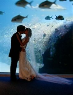The NC Aquarium at Pine Knoll Shores is a great location for tying the knot on the Crystal Coast.