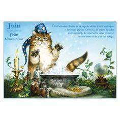 Carte postale de chat de Séverine Pineaux, mois de Juin, Félin l'enchanteur
