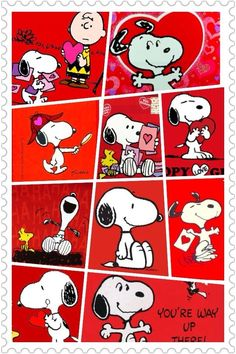 Snoopy Cartoon, Peanuts Cartoon, Peanuts Snoopy, Animated Cartoon Characters, Classic Cartoon Characters, Classic Cartoons, Fictional Characters, Snoopy Wallpaper, Hello Kitty Wallpaper