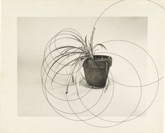 Gerald Hayes, Drawing, 1973-74