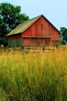 Barn Beside The Field