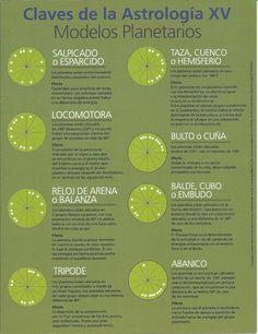 "Escuela de Astrología ""Contacto con las Estrellas"": 2012 Pisces Moon, Gemini Zodiac, Astrology Zodiac, Horoscope, Astrology Books, Tarot Astrology, Astrology Numerology, Zodiac Elements, Personality Psychology"