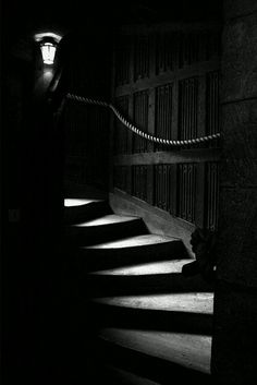 ☾ Midnight Dreams ☽ dreamy & dramatic black and white photography - stairs Dark Photography, Black And White Photography, Spotlight Photography, Black N White, Black White Photos, Half Elf, Leeds Castle, Photo D Art, Stairway To Heaven