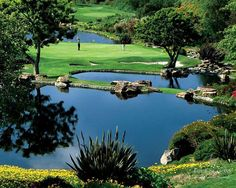 Beautiful golf courses throughout Carlsbad
