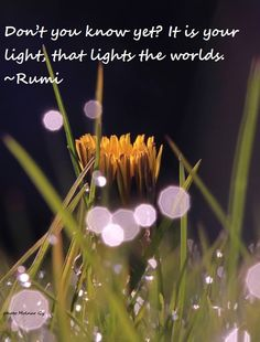 """☀ """"Don't you know yet? It is your light, that lights the worlds."""" ~~Rumi"""