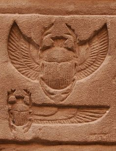 Scarab Tattoo, Beetle Tattoo, Ancient Egypt Art, Old Egypt, Egyptian Symbols, Egyptian Art, Parrot Image, Egypt Mummy, Epic Tattoo