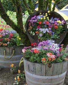 Garden ideas--love all the colors!