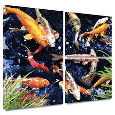 'Koi' by George Zucconi Flag 3 Piece Painting Print Gallery-Wrapped on Canvas Set