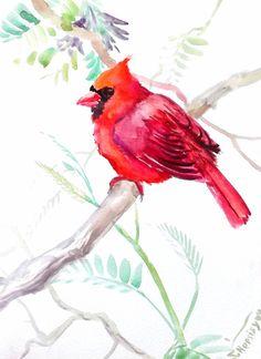 Cardinal bird, original watercolor painting, birds painting, red bird northern cardinal 12 X 9 on Etsy, 17,86€