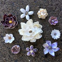 Shell flowers