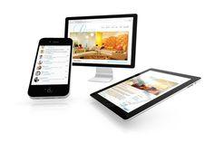 Steven Wroczynski — L Spa Mobile Web Design
