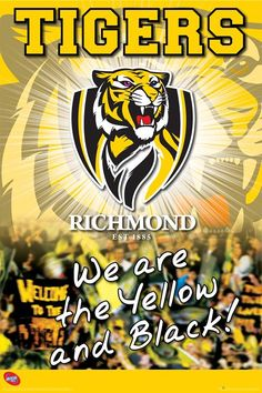 264 Best Richmond Tigers images in 2016 | Richmond football