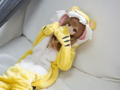 Smart Doll Mirai Suenaga by teaoevo