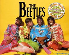 Meet The Beetles (Picture)
