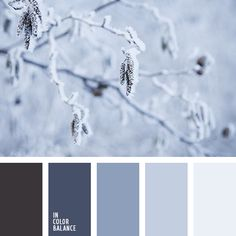 monochrome color palette palettes with color ideas for decoration your house, wedding, hair or even nails. Red Color Schemes, Red Colour Palette, Bedroom Color Schemes, Bedroom Colors, Bedroom Green, Kitchen Color Palettes, Monochrome Color, Color Balance, Light Blue Color