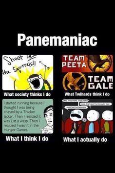 Panemanic