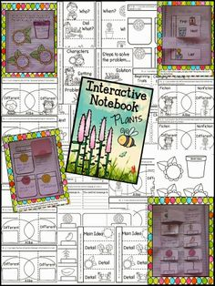 Plants - Interactive Notebook