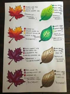Leaf Coloring chart for colored pencils Coloring Book Art, Coloring Tips, Leaf Coloring, Adult Coloring, Colored Pencil Tutorial, Colored Pencil Techniques, Leaf Drawing, Drawing Art, Drawing Techniques