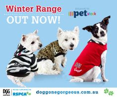 DGG Winter range out now