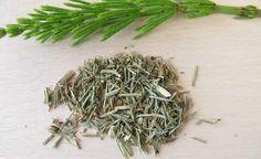 Já conhecido por ser um poderoso chá que emagrece, mas que, diferente do chá verde, tem um sabor agradável, o chá de hibisco pode ficar ainda mais potente. A cavalinha tem poderosas propriedades diuréticas e pode ajudar emagrecer ainda mais rápido. Veja também: