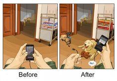 8 dessins illustrant l'arrivée d'un chien dans votre vie !