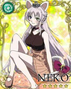 Project K. Neko