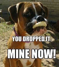 You dropped it. Mine now